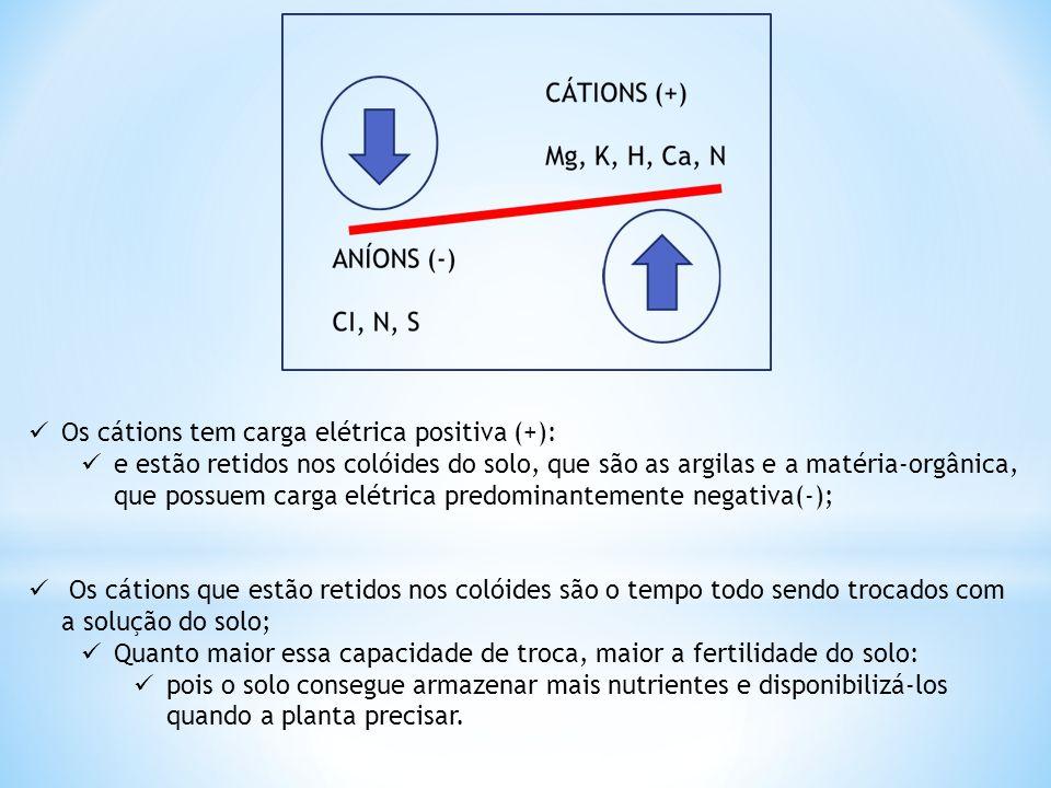 Os cátions tem carga elétrica positiva (+):