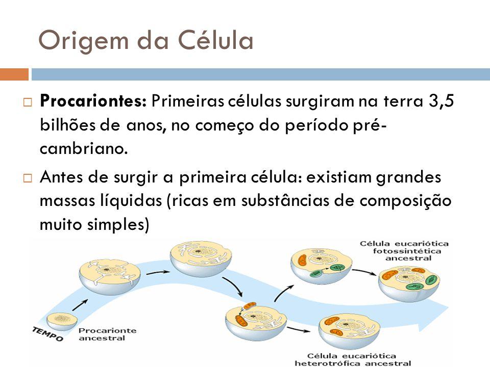 Origem da Célula Procariontes: Primeiras células surgiram na terra 3,5 bilhões de anos, no começo do período pré- cambriano.