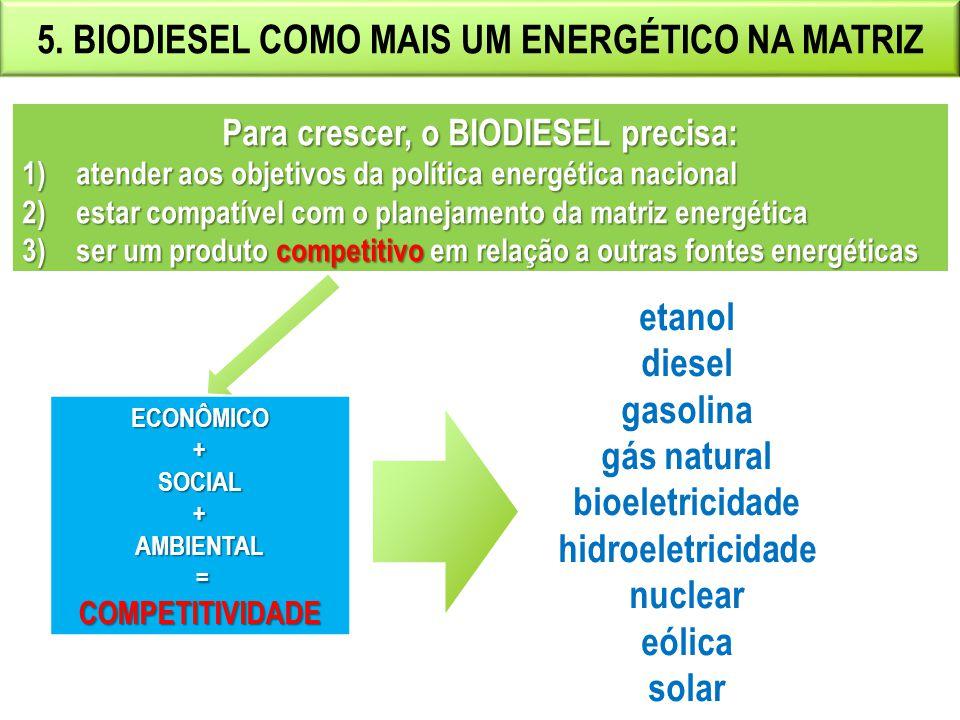 5. BIODIESEL COMO MAIS UM ENERGÉTICO NA MATRIZ