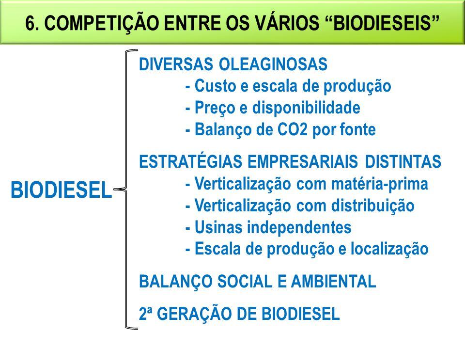 6. COMPETIÇÃO ENTRE OS VÁRIOS BIODIESEIS