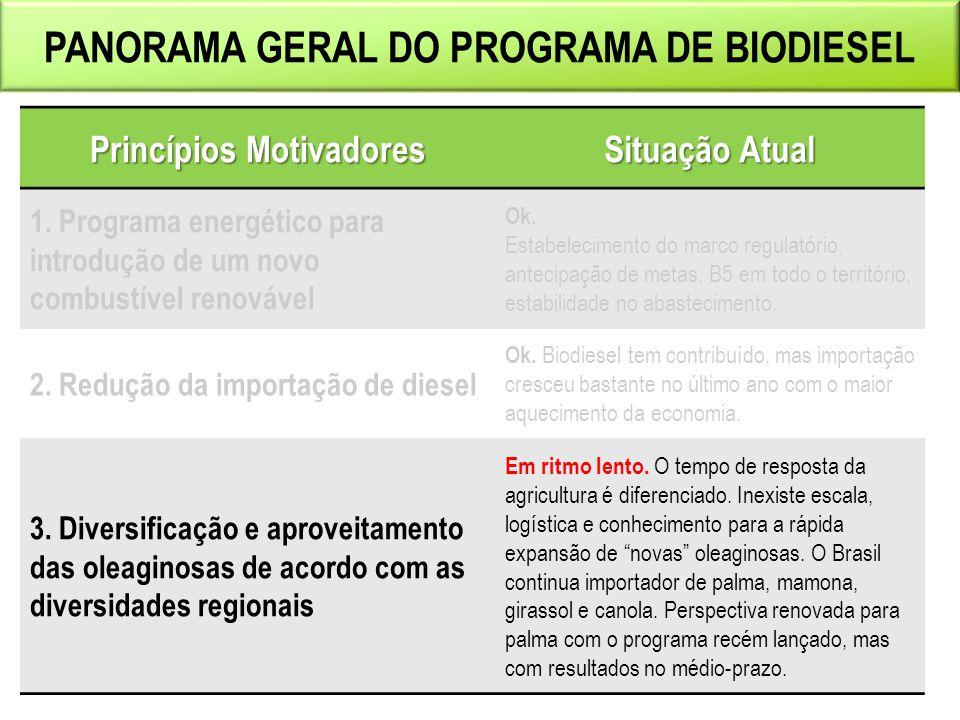 Panorama geral do programa de biodiesel Princípios Motivadores