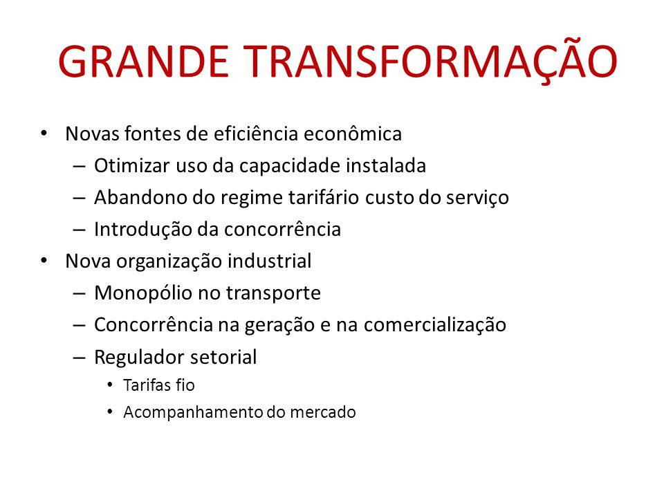 GRANDE TRANSFORMAÇÃO Novas fontes de eficiência econômica