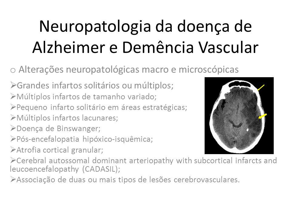 Neuropatologia da doença de Alzheimer e Demência Vascular