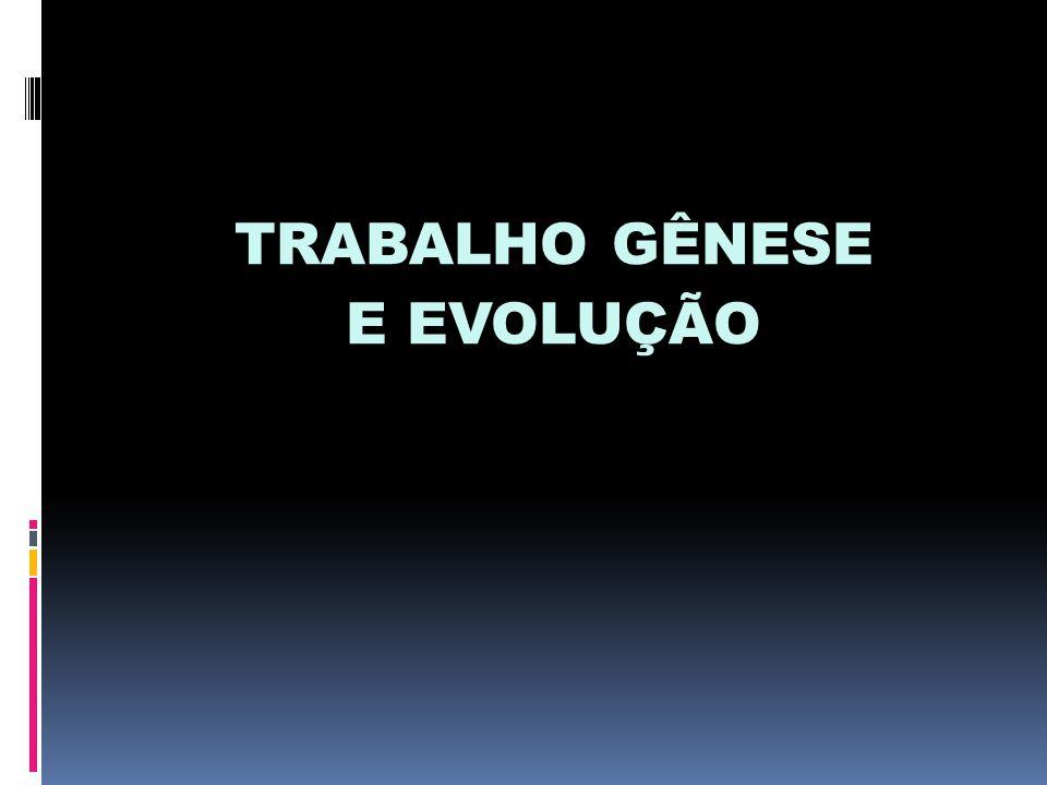 TRABALHO GÊNESE E EVOLUÇÃO
