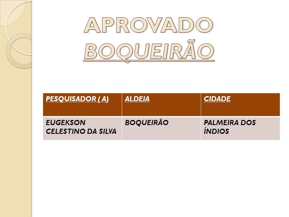 APROVADO BOQUEIRÃO PESQUISADOR ( A) ALDEIA CIDADE