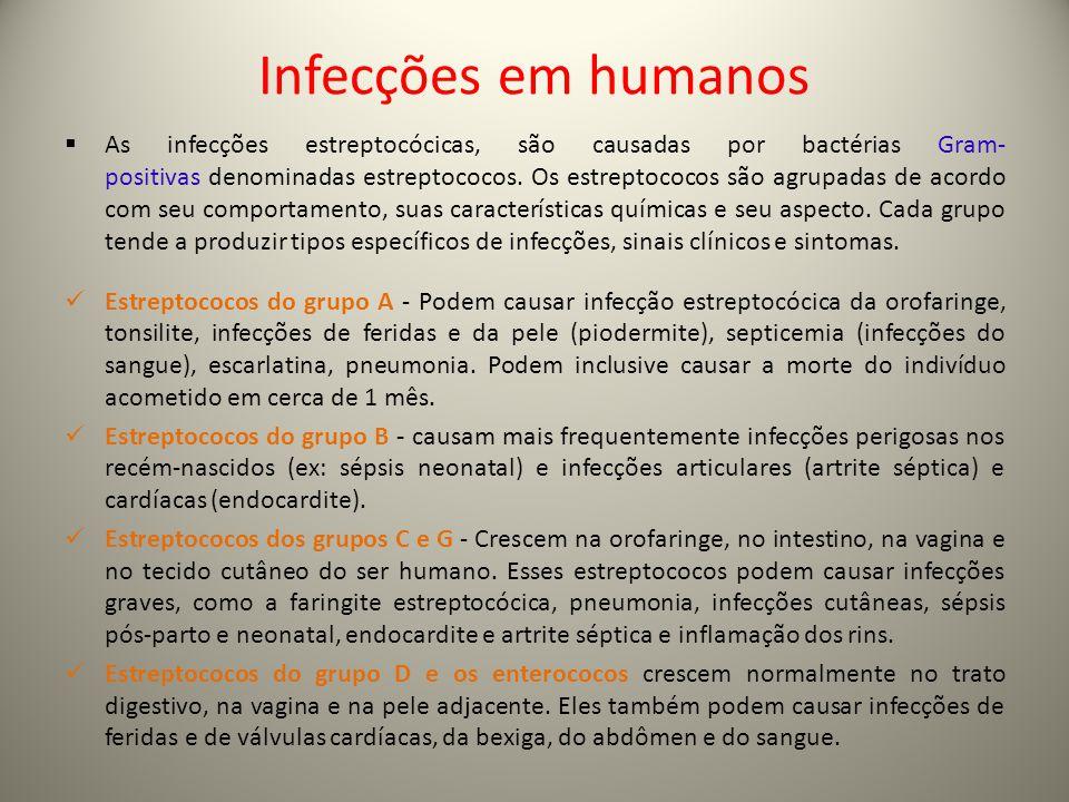 Infecções em humanos