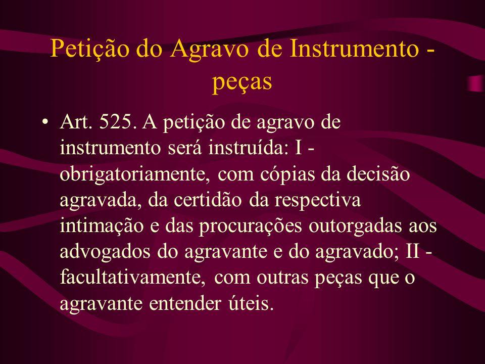 Petição do Agravo de Instrumento - peças