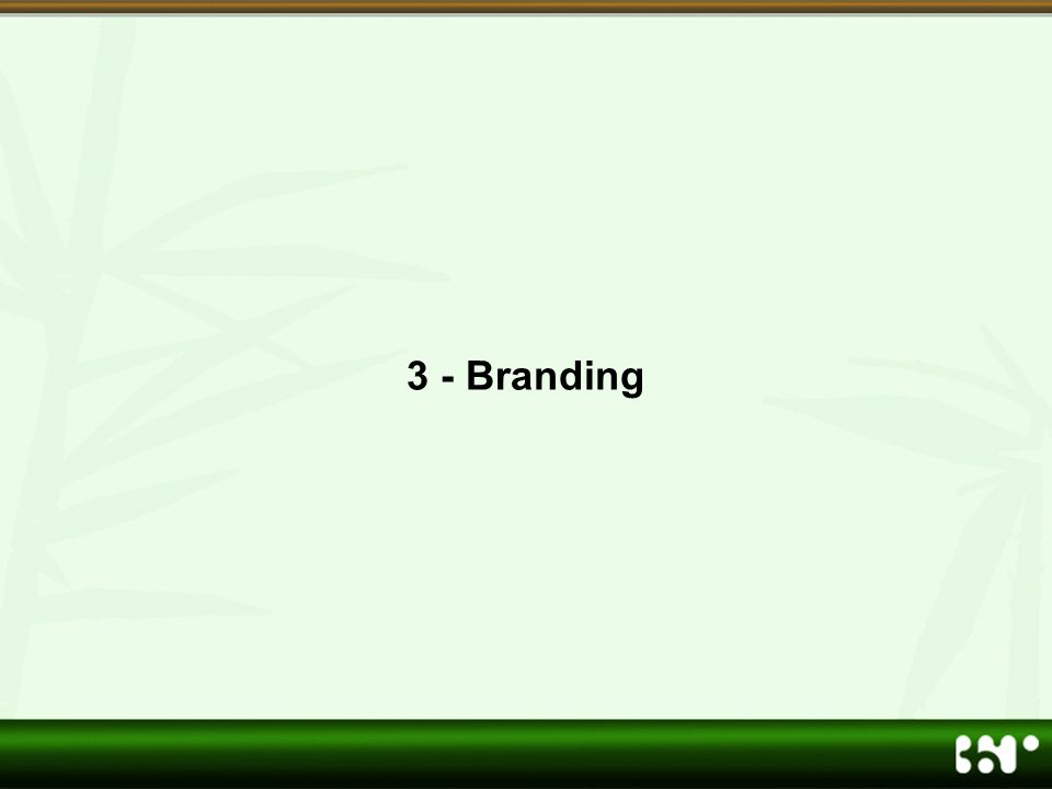 3 - Branding