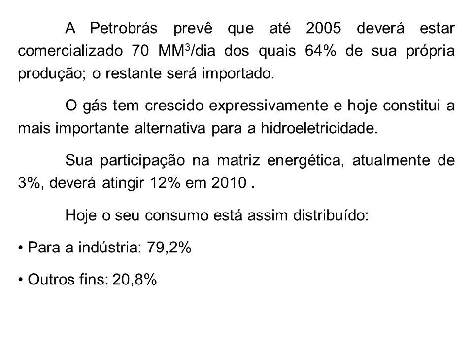 A Petrobrás prevê que até 2005 deverá estar comercializado 70 MM3/dia dos quais 64% de sua própria produção; o restante será importado.