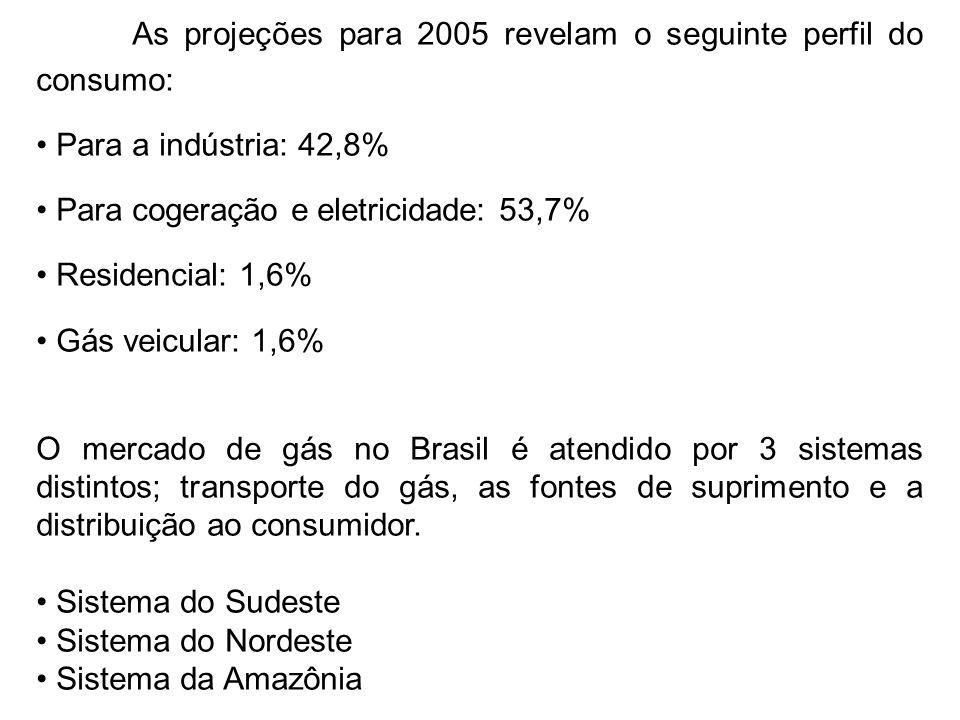 As projeções para 2005 revelam o seguinte perfil do consumo: