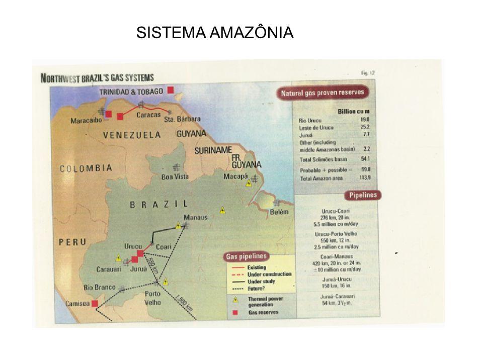 SISTEMA AMAZÔNIA