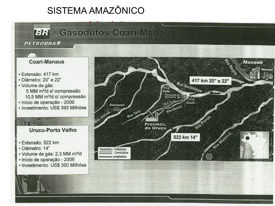 SISTEMA AMAZÔNICO