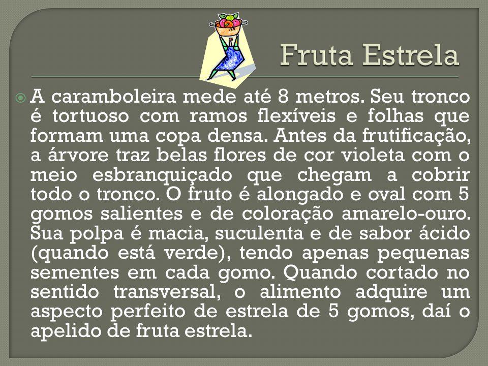 Fruta Estrela