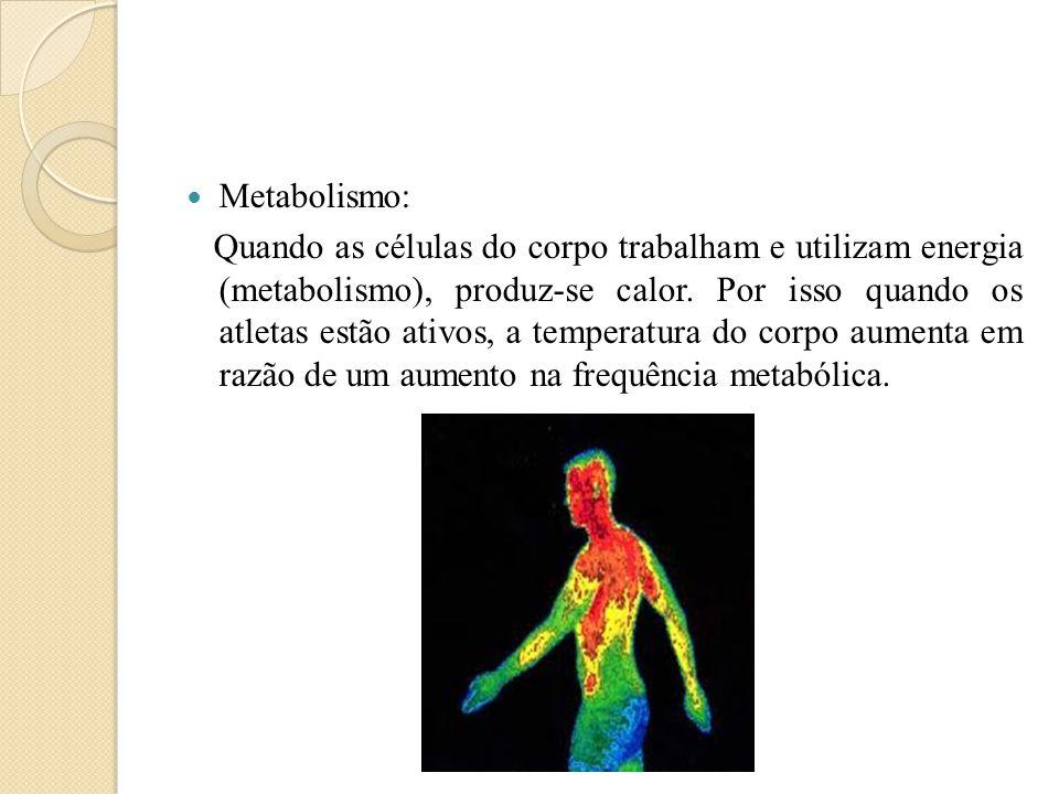 Metabolismo: