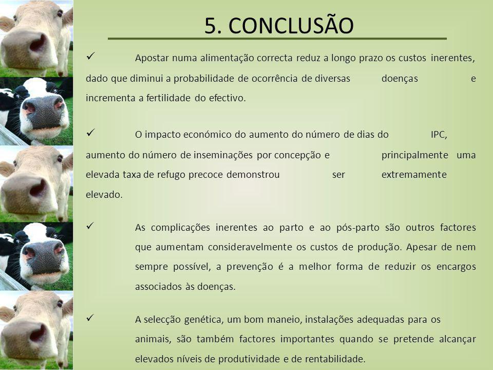 5. CONCLUSÃO