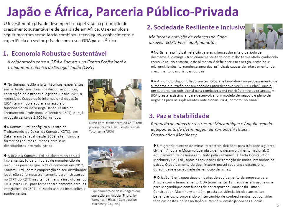 Japão e África, Parceria Público-Privada