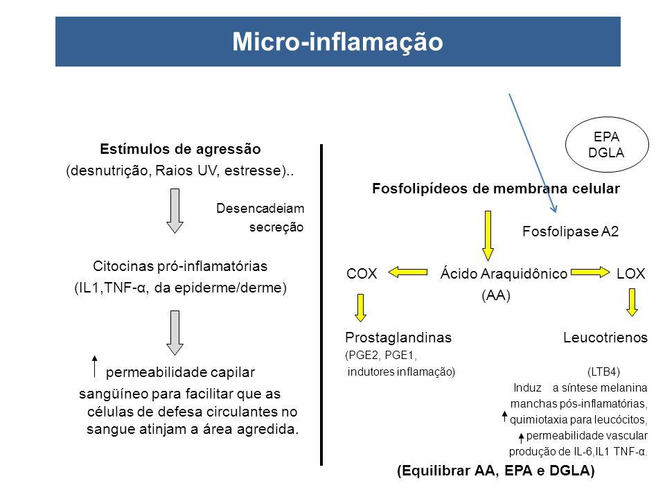 (Equilibrar AA, EPA e DGLA)