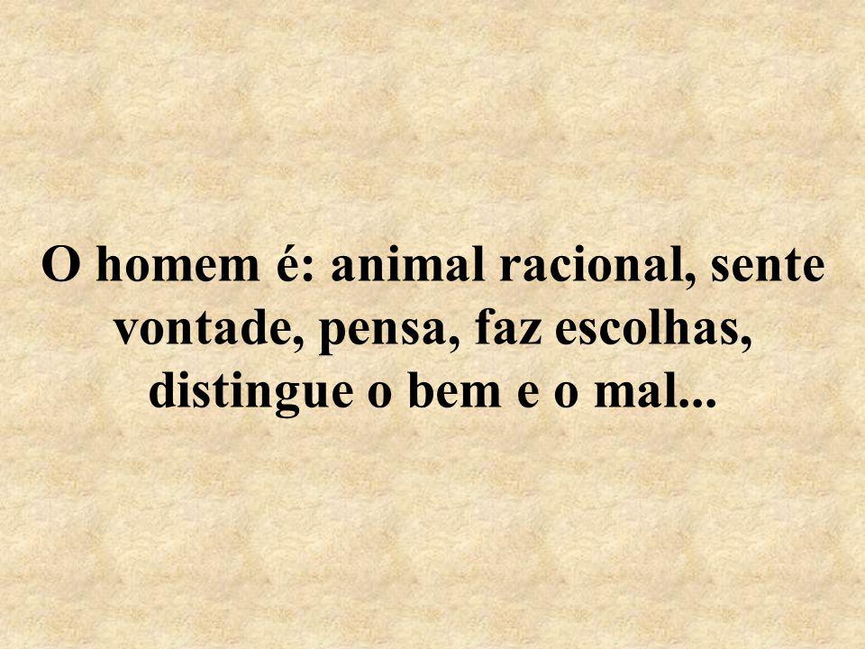O homem é: animal racional, sente vontade, pensa, faz escolhas, distingue o bem e o mal...