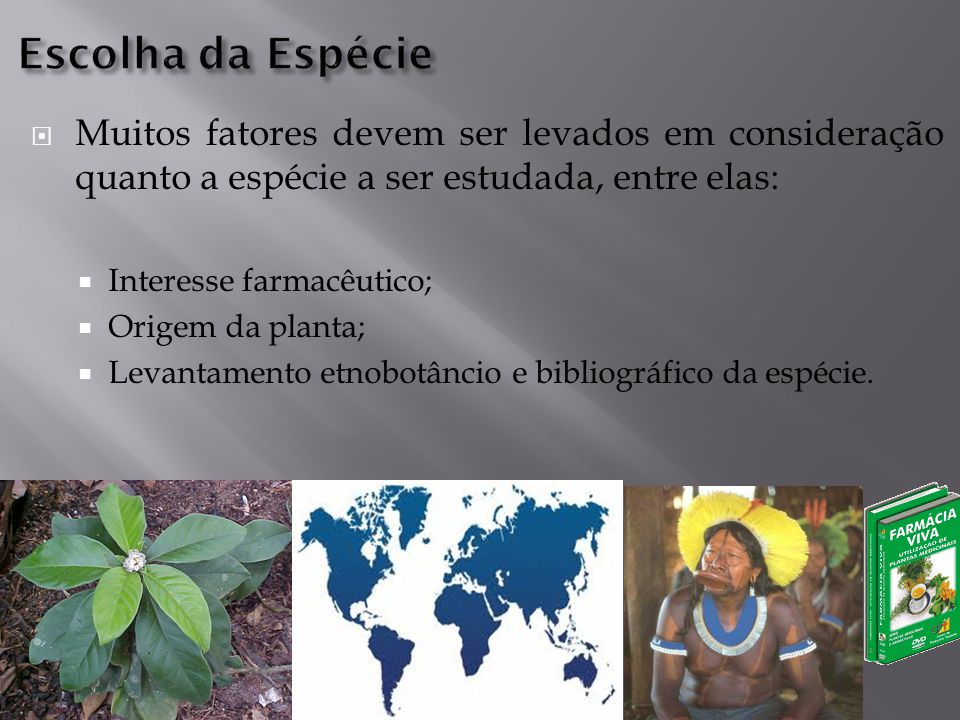 Escolha da Espécie Muitos fatores devem ser levados em consideração quanto a espécie a ser estudada, entre elas: