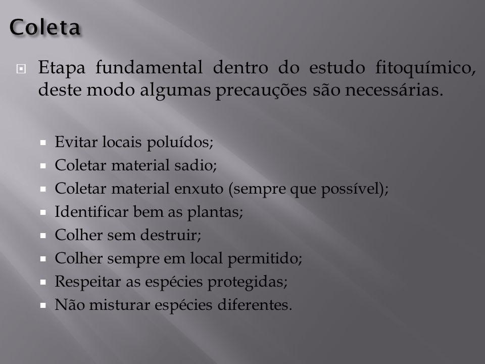 Coleta Etapa fundamental dentro do estudo fitoquímico, deste modo algumas precauções são necessárias.