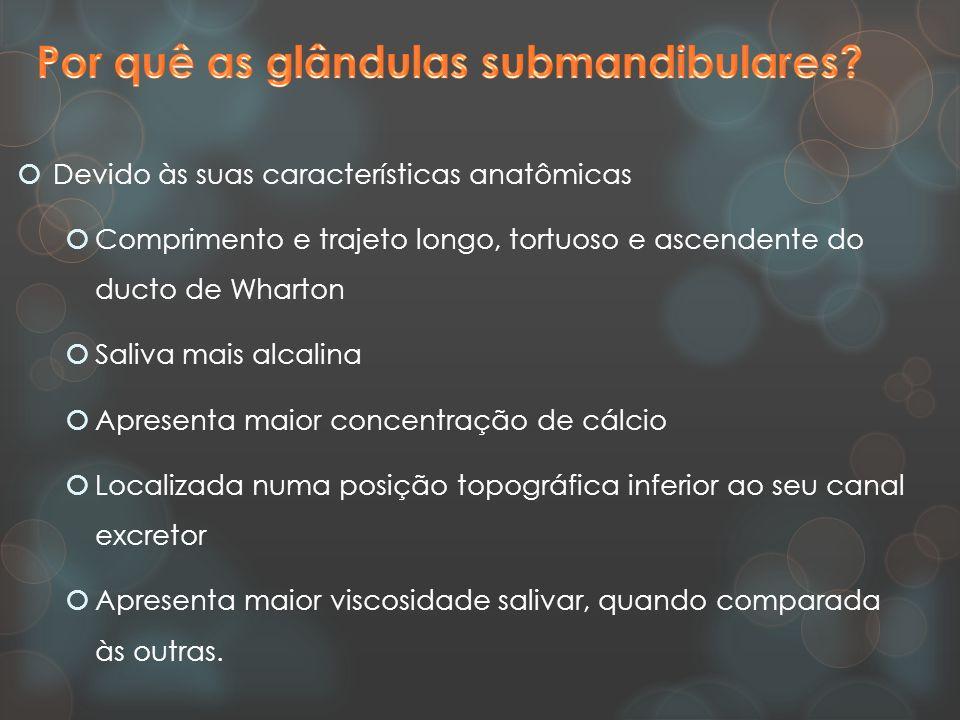 Por quê as glândulas submandibulares