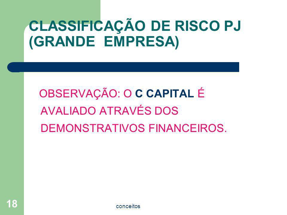CLASSIFICAÇÃO DE RISCO PJ (GRANDE EMPRESA)