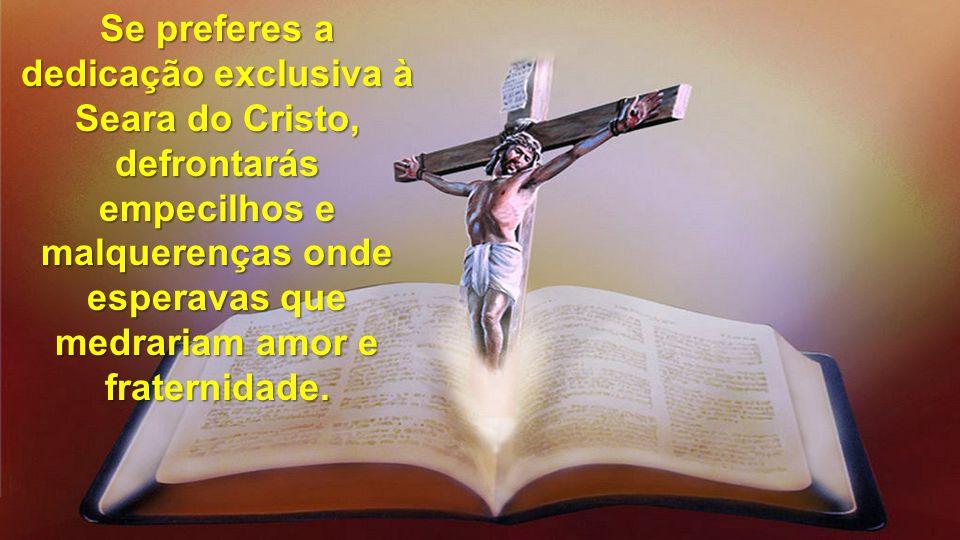 Se preferes a dedicação exclusiva à Seara do Cristo, defrontarás empecilhos e malquerenças onde esperavas que medrariam amor e fraternidade.