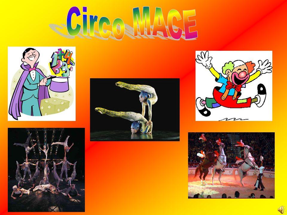 Circo MACE