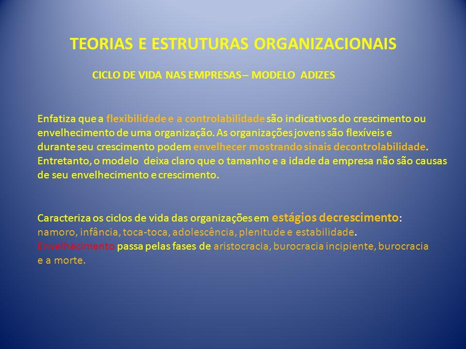 TEORIAS E ESTRUTURAS ORGANIZACIONAIS