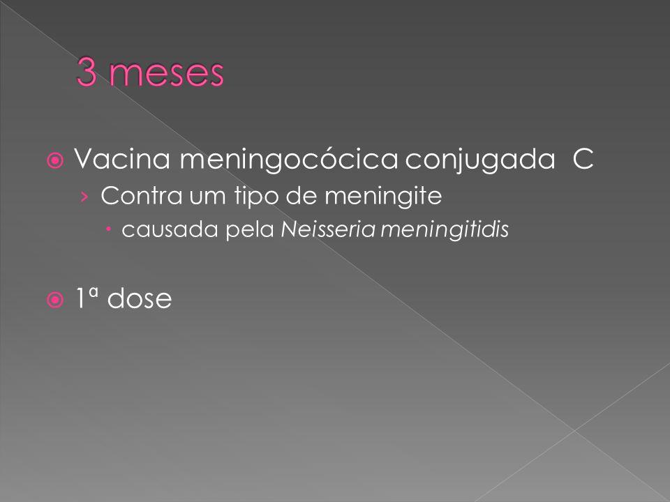3 meses Vacina meningocócica conjugada C 1ª dose