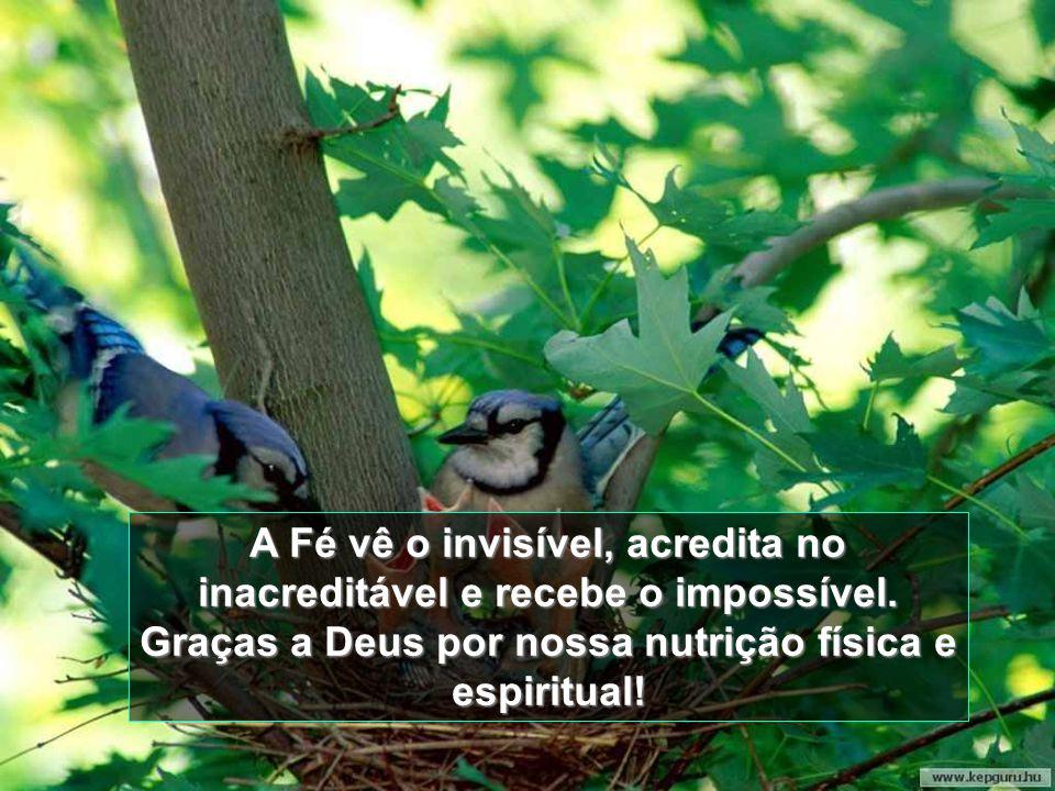 A Fé vê o invisível, acredita no inacreditável e recebe o impossível