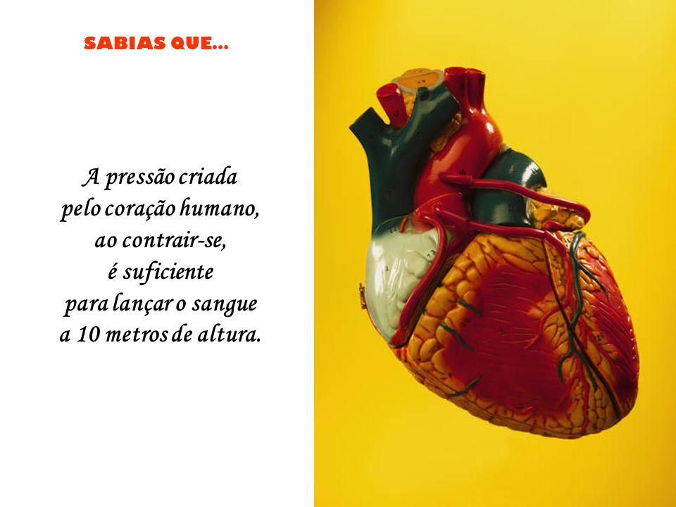 A pressão criada pelo coração humano, ao contrair-se, é suficiente.