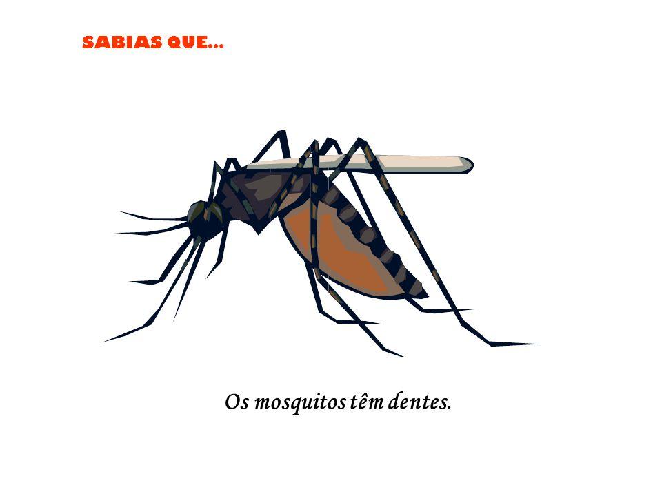 Os mosquitos têm dentes.