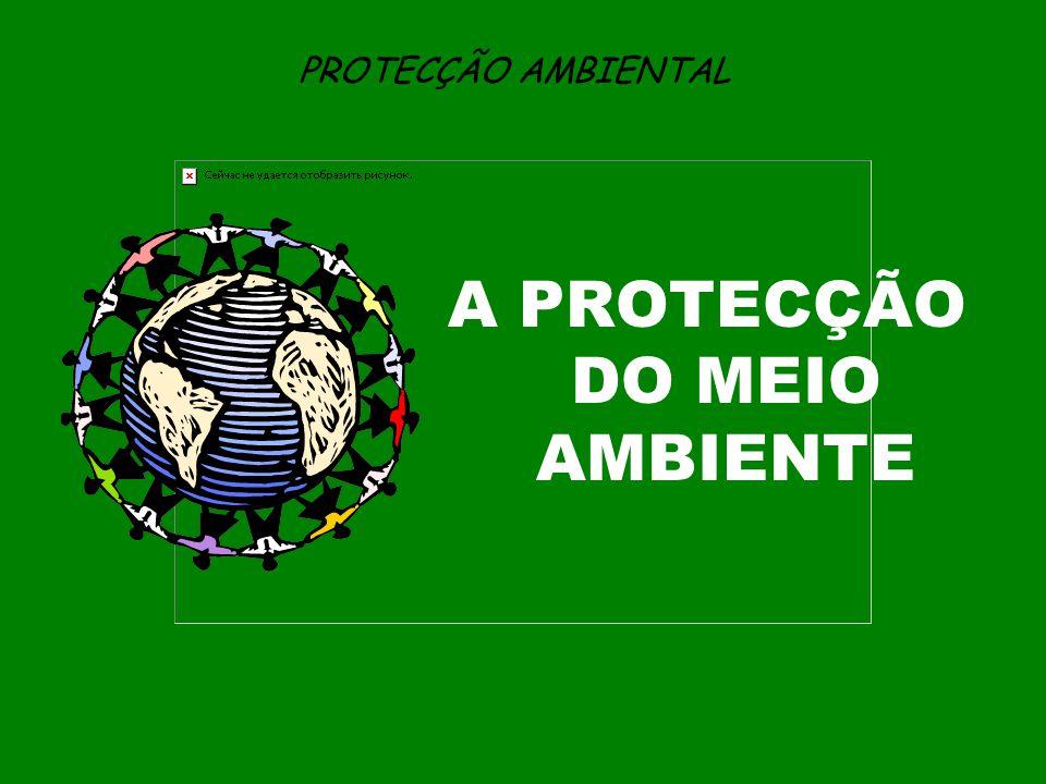A PROTECÇÃO DO MEIO AMBIENTE