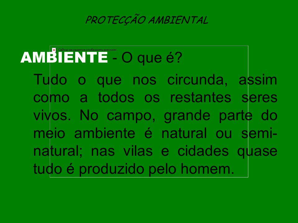 PROTECÇÃO AMBIENTAL AMBIENTE - O que é