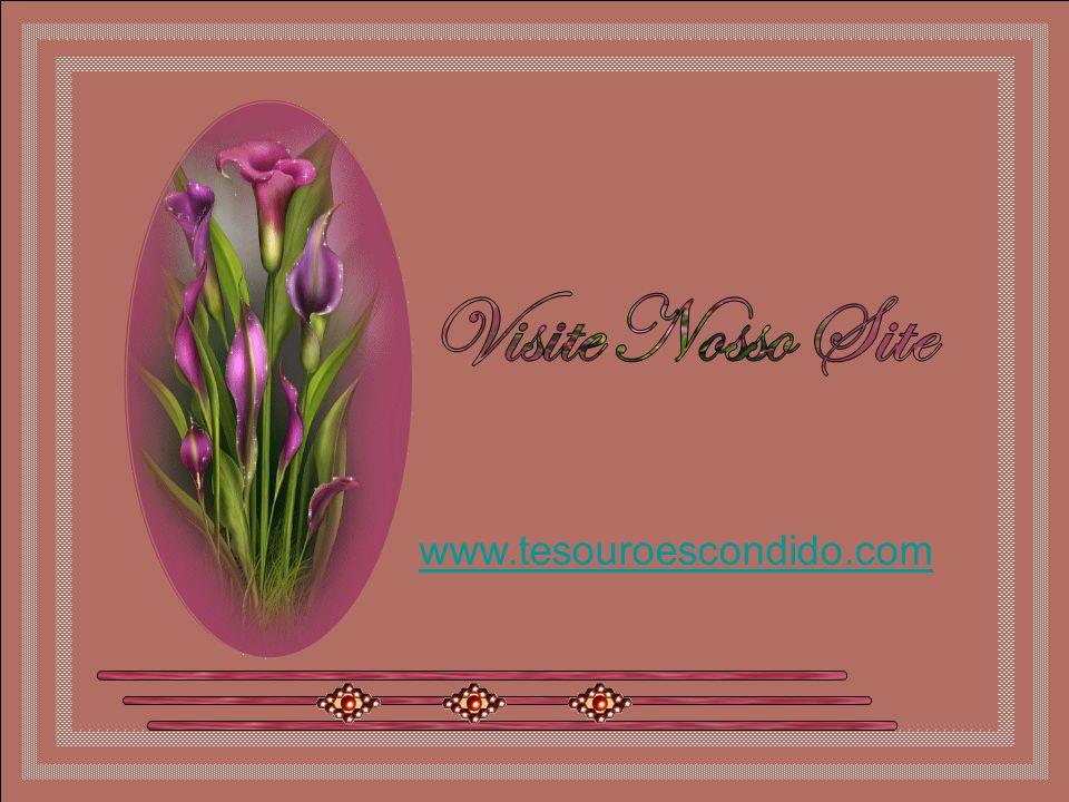 Visite Nosso Site www.tesouroescondido.com