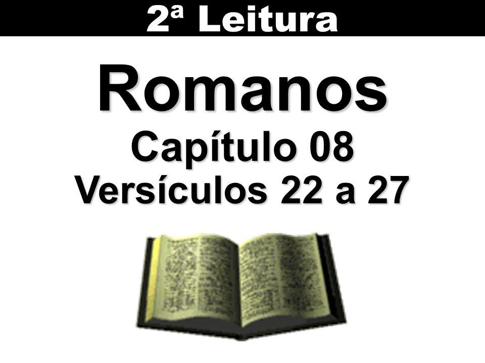 2ª Leitura Romanos Capítulo 08 Versículos 22 a 27