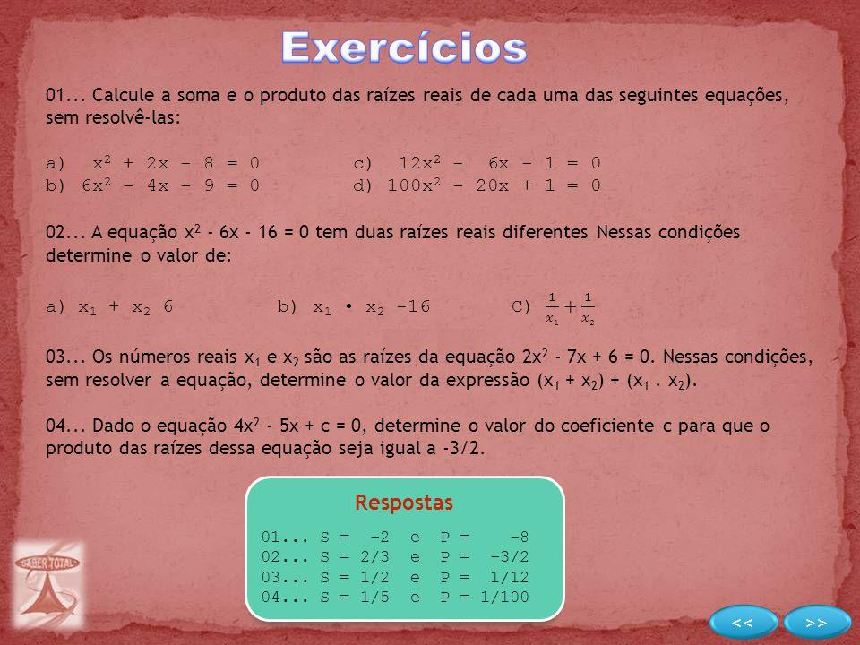 Exercícios Respostas << >>