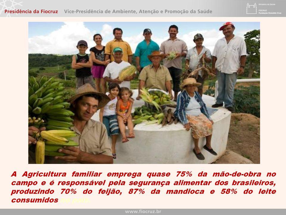 A Agricultura familiar emprega quase 75% da mão-de-obra no campo e é responsável pela segurança alimentar dos brasileiros, produzindo 70% do feijão, 87% da mandioca e 58% do leite consumidos no país.