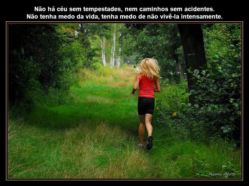 Não há céu sem tempestades, nem caminhos sem acidentes.