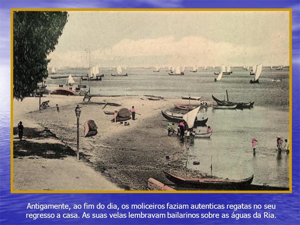 Antigamente, ao fim do dia, os moliceiros faziam autenticas regatas no seu regresso a casa.