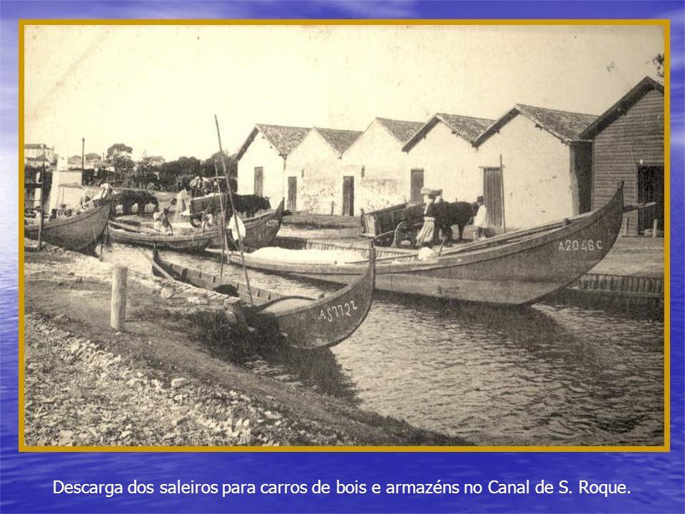 Descarga dos saleiros para carros de bois e armazéns no Canal de S