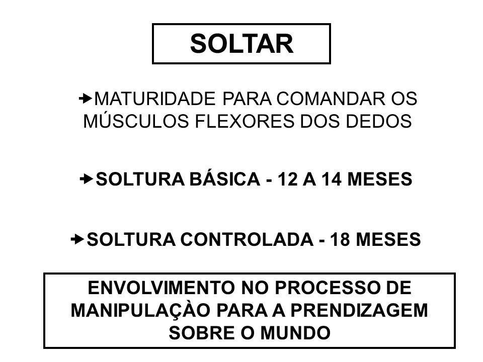 SOLTURA BÁSICA - 12 A 14 MESES SOLTURA CONTROLADA - 18 MESES