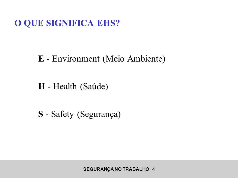 O QUE SIGNIFICA EHS E - Environment (Meio Ambiente) H - Health (Saúde) S - Safety (Segurança)