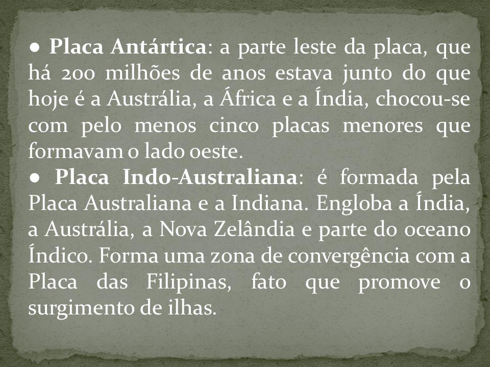 ● Placa Antártica: a parte leste da placa, que há 200 milhões de anos estava junto do que hoje é a Austrália, a África e a Índia, chocou-se com pelo menos cinco placas menores que formavam o lado oeste.