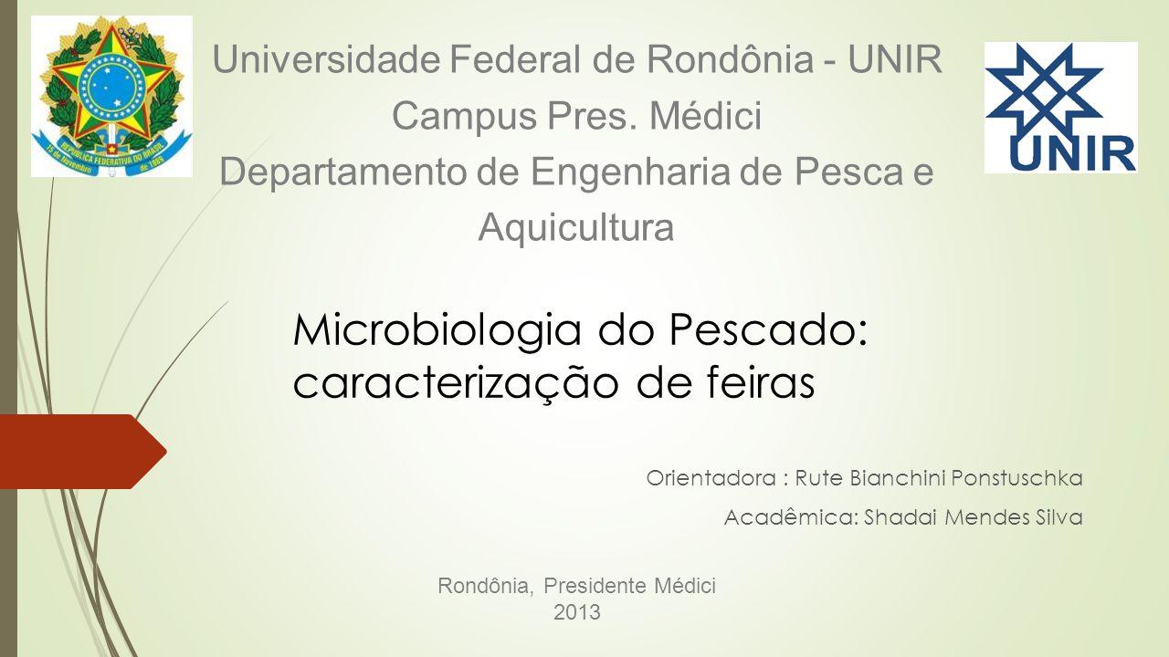 Rondônia, Presidente Médici 2013