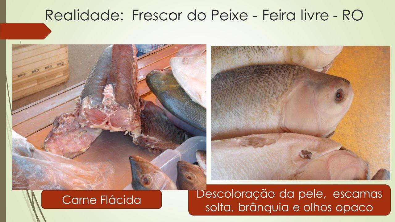 Realidade: Frescor do Peixe - Feira livre - RO