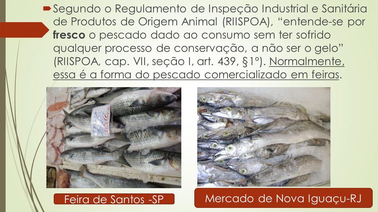 Mercado de Nova Iguaçu-RJ