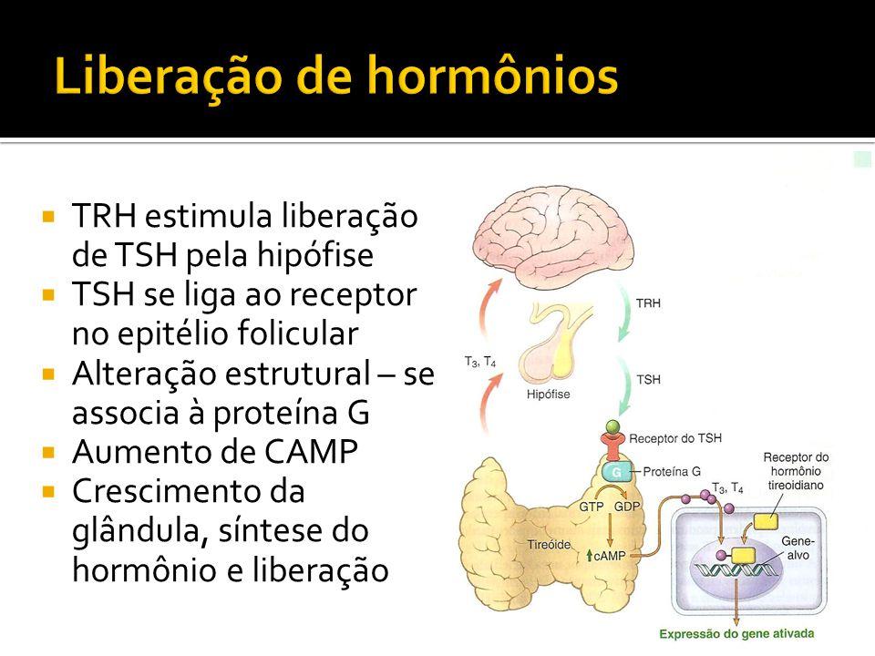 Liberação de hormônios