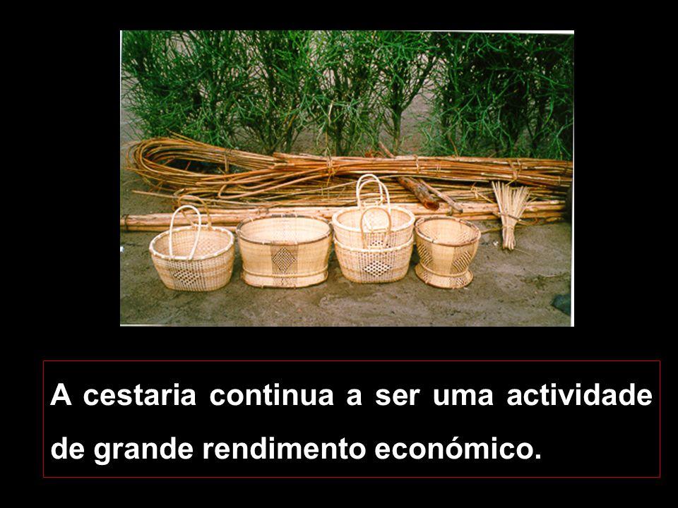 A cestaria continua a ser uma actividade de grande rendimento económico.